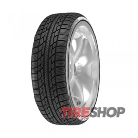 Шины Achilles Winter 101X 185/70 R14 88T