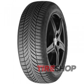 Шины Nexen Winguard Snow G WH2 165/65 R14 79T