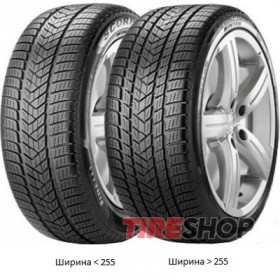 Шины Pirelli Scorpion Winter 255/50 R19 107V XL