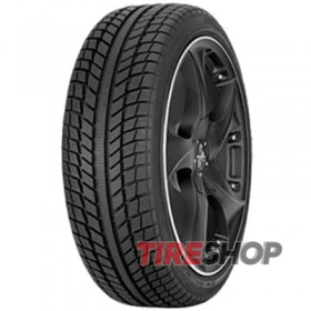 Шины Syron Everest C 195/75 R16C 107/105T