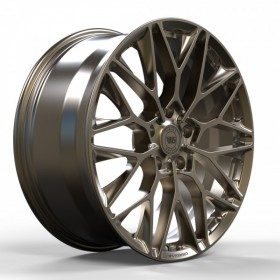 Диски WS FORGED WS581 FULL_BRUSH_BRONZE_FORGED R20 5x130 ET60.0 11.0J DIA71.6