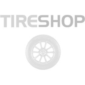 Шины Powertrac Snowmarch STUD 185/75 R16C 104/102R (под шип)