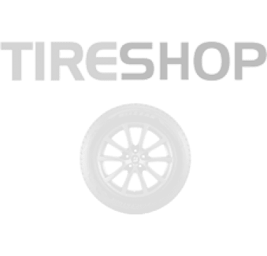 Шины Tigar High Performance 225/50 R16 92W Сербия 2019